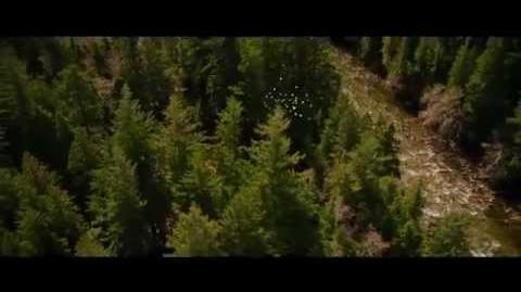 Twilight Breaking Dawn Teil 2 Trailer deutsch offizieller Teaser Trailer german