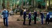 Cullens Training