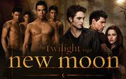 The-twilight-saga-new-moon-powerpoint-background-14