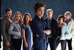 Die Cullens in Twilight