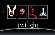 Twilight Saga Books Wallpaper by miratio