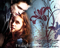 Edward-Bella-Wallpaper-twilight-ser