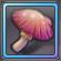 Item-Fresh Mushroom