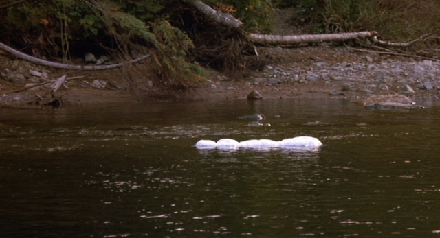 File:BodyFloating.png