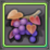 Item-Common Berry