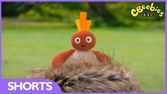 CBeebies Cheeky Twirlywoos!