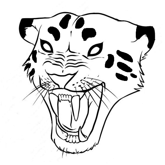 how to draw a jaguar step 7jpg