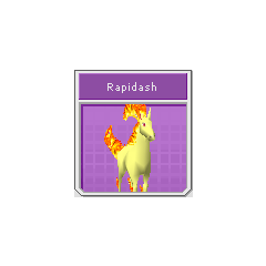 Rainbow Dash Rapidash