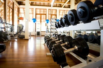 The iron hoof gym twitterponies wiki fandom powered by wikia