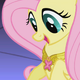 Fluttershy sees Element of Harmony S1E02
