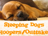 Sleeping Dogs (Bloopers/Outtakes)