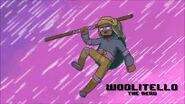 Turtle Week Woolitello