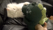 Zach vs Godzilla