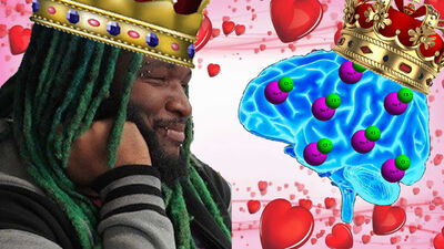Woolie Loves Chemicals