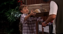 Porky being shown to Charlie