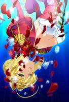 Fate Extra Last Encore Visual