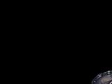 Assassin (Fate/Grand Order - Yan Qing)