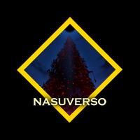 NavNasuversoCOLOR