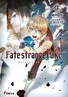 Fate strange fake vol 4 cover(Fmz)