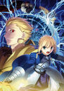 Fate Zero second novel Cover