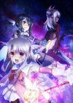 Fate kaleid liner PRISMA ILLYA 2wei! Visual 2