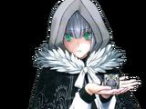 Assassin (Fate/Grand Order - Gray)