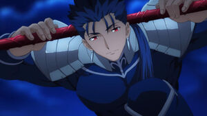 Fsn Lancer in anime