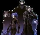 Ассасин (Fate/Zero)