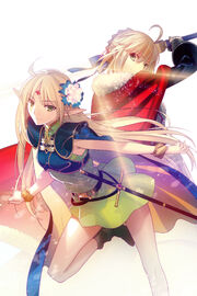 Record of Lodoss War and Fatestay night Crossover