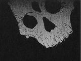 Истинный Ассасин (Fate/strange fake)