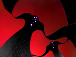 Sakura Matou   TYPE-MOON Wiki   FANDOM powered by Wikia