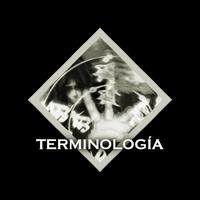 NavTerminología