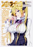 Fate kaleid Drei Manga Vol 9
