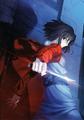 Kara no kyoukai novel cover 1.png