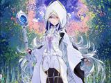 Caster (Fate/Grand Order Arcade)