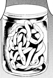 Smallhydra