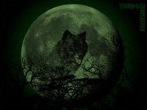 Wolf Moon alternate