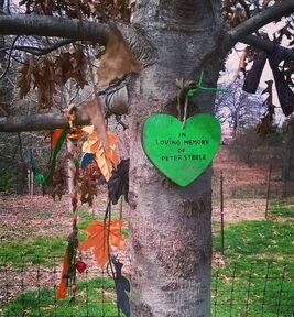 Peter Steele Tree
