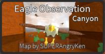 Eagle Observation (Canyon)