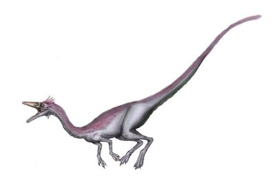 Nqwebasaurus2
