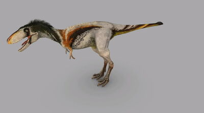 Dinosaur Revolution Raptorex