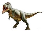 Tyrannosaurus-rex-a-genus-mohamad-haghani
