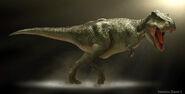 Tyrannosaurus22