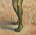 Three toed Saurian