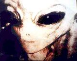 Extraterrestrial biological entity
