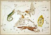 Sidney Hall - Urania's Mirror - Lacerta, Cygnus, Lyra, Vulpecula and Anser