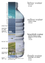 Water salinity diagram