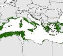Osirian civilization