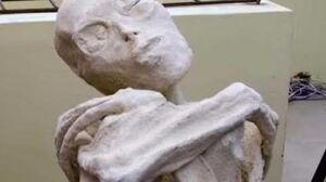 2323【1B重】Three Fingered Humanoid Mummy in Nazca ナスカで見つかった3本指のヒューマノイド・ミイラbyはやし浩司-0