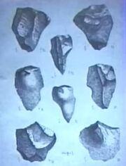 20 million year old artifacts